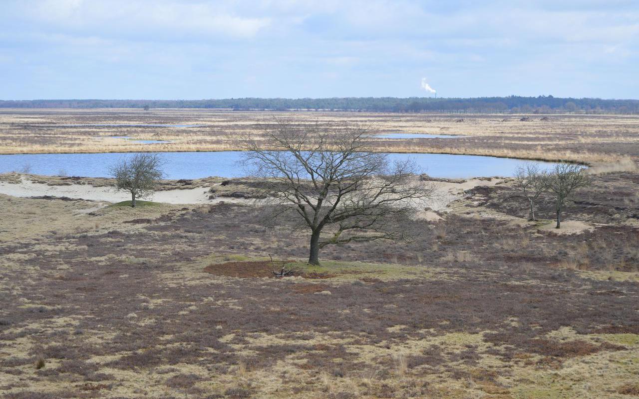 Uitzicht Dwingelderveld vanaf nieuwe uitklijktoren