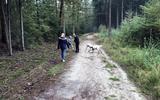 Dit hondenloslooppad bij de Vijverweg is dicht, de andere route volgt in oktober.