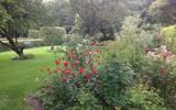 De tuin van Chris Bruinsma in Zuidwolde.